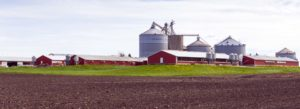 Header - Farm Insurance